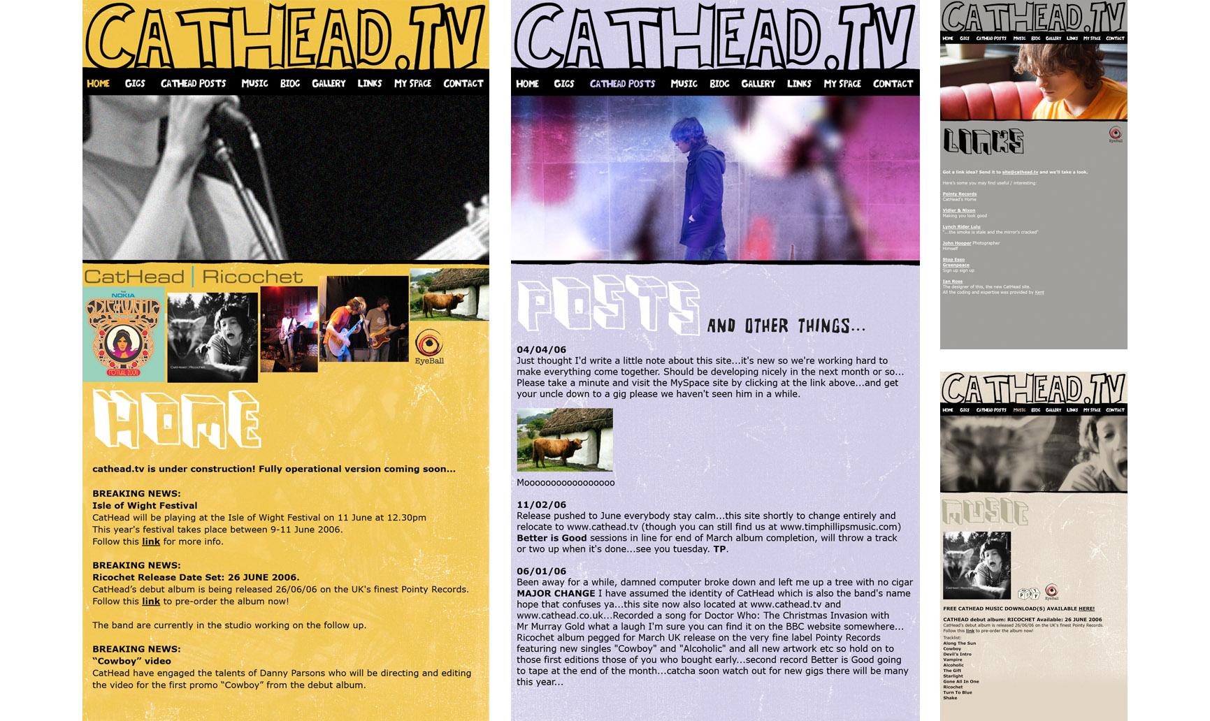 CatHeadWeb